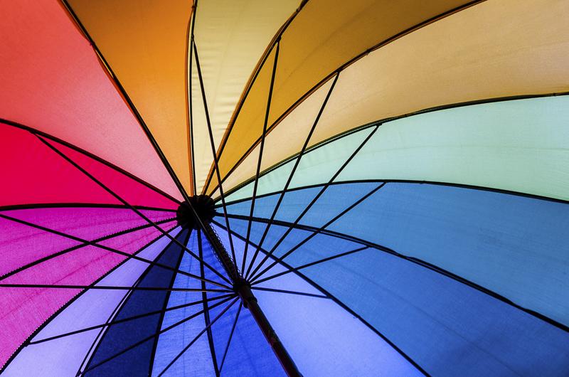 J Ledo Multicolore