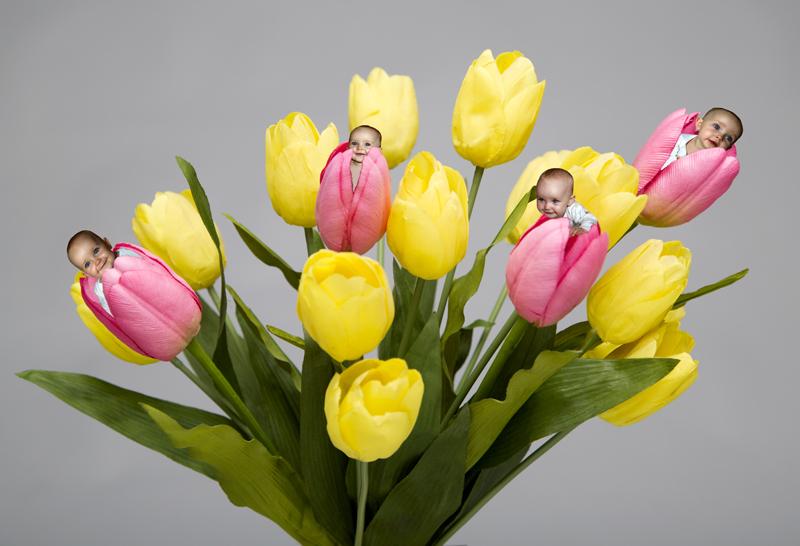 a-cossard-bouquet-de-bebes