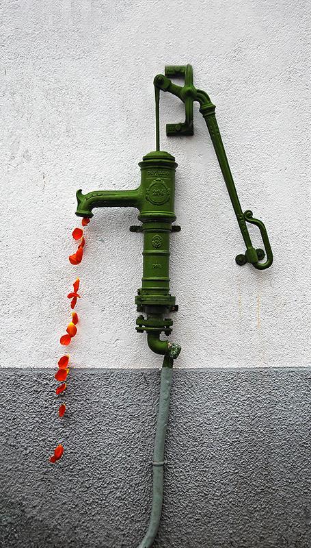 c-davoult-fontaine-de-petales