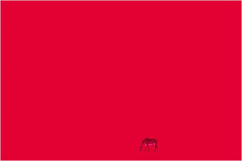 ph-bernet-cheval-rouge