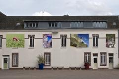 13 Cours Saint Philibert 2