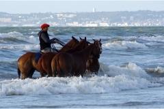 www.regardsetimages.fr-87ieme-a-hebert-bain-de-mer-43pts