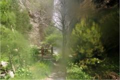 www.regardsetimages.fr-97ieme-a-hebert-cascade-saint-benoit-39pts